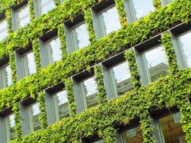 zielona fasada